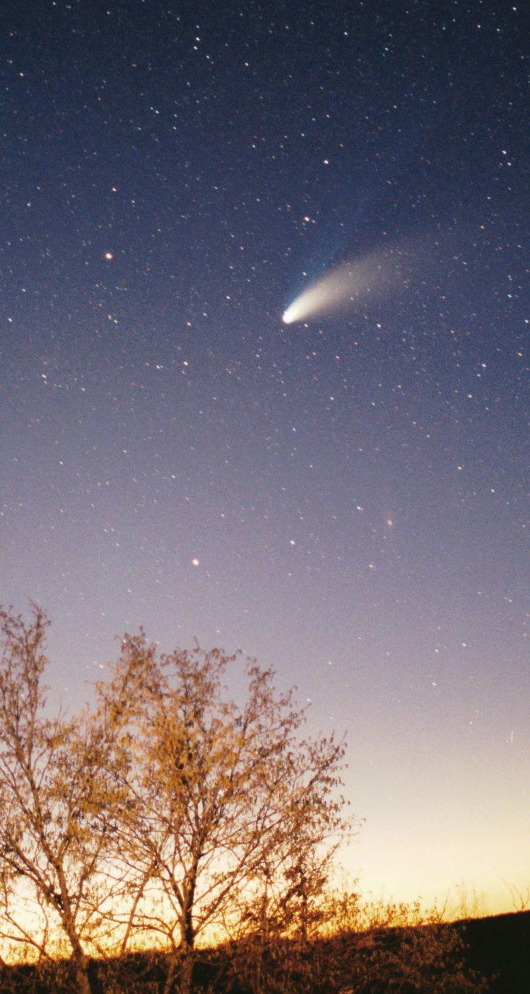 Cometa Hale