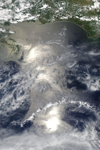Contaminación por petróleo en el Golfo de México.
