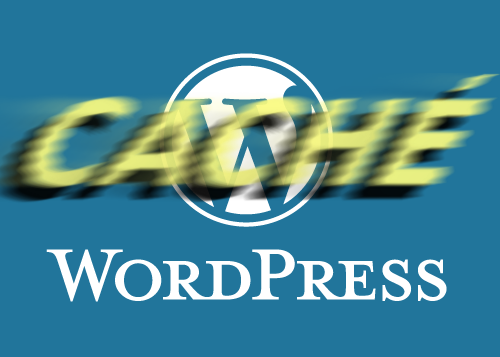 Wordpress caché.