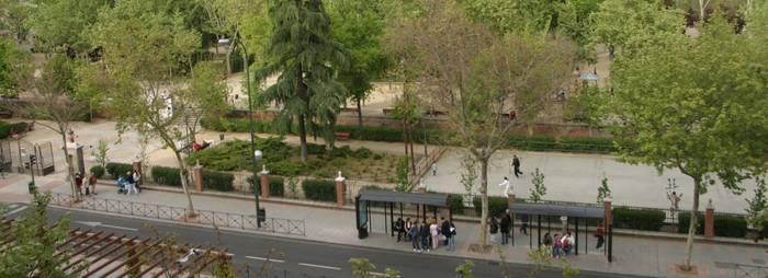 Árboles de Francisco Silvela enfrente del parque Eva Perón