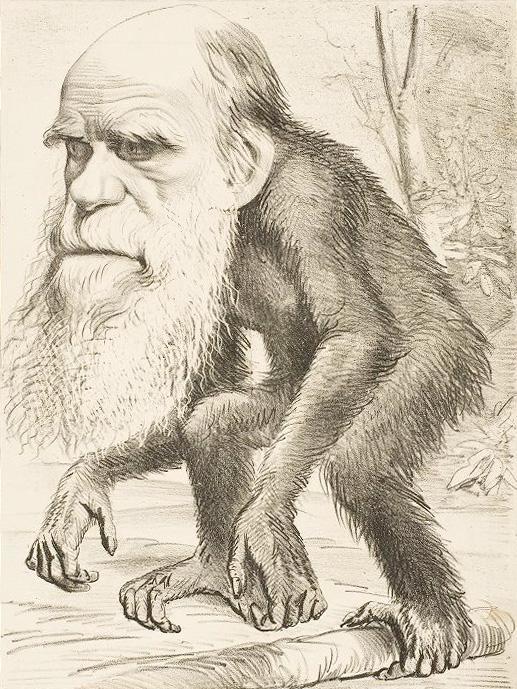 Darwin caricatura ofensiva.
