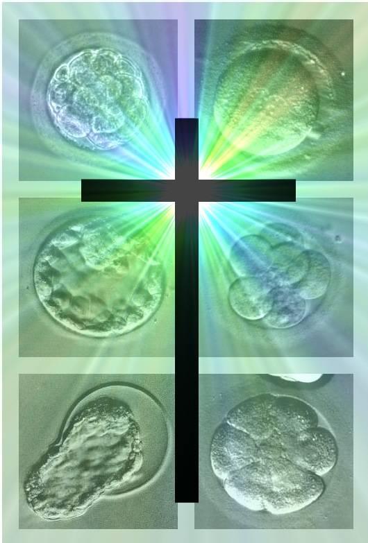 Fecundación in vitro vs. Religión.