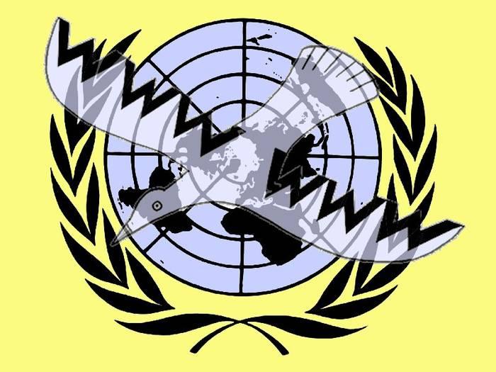 ONU vs. ciberderechos