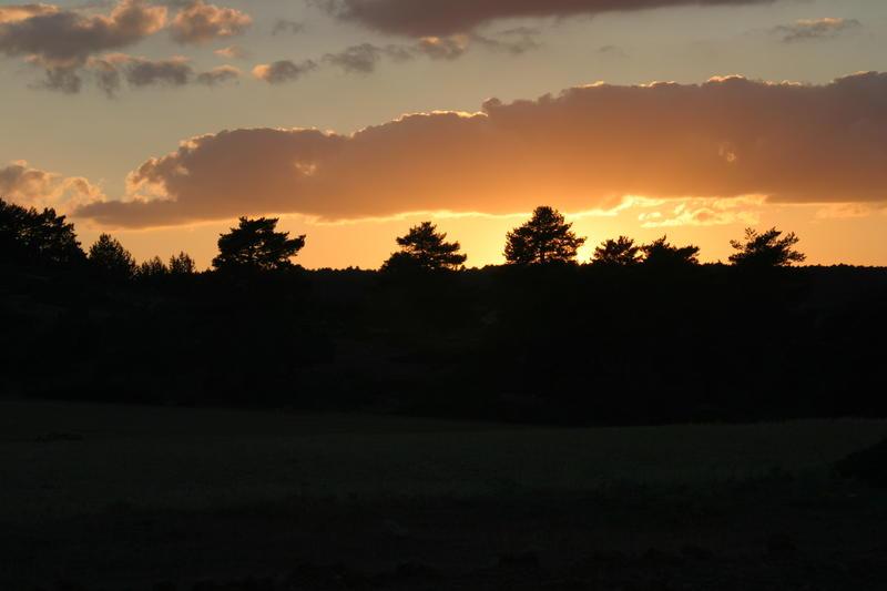 Contraluz, puesta de sol